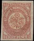 168755 / 697 - Filatelie / Amerika a Karibik / Severní Amerika / Newfoundland