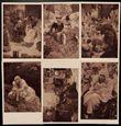 193273 / 1784 - Pohlednice / Motiv / Muchovky