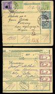 23794 / 4 - Philately / Czechoslovakia 1918-1939 / Forerunners 1918-1919