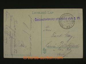 106430 - 1919 Czechosl. Rifle Rgt. No.11, blue straight line postmark