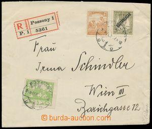 113768 - 1919 R-dopis adresovaný do Vídně vyfr. smíšenou frankaturou
