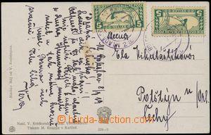 113853 - 1919 pohlednice vyfr. 2ks spěšných obdélníkových zn. 5h, Mi.