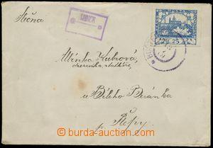 124851 - 1919 poštovna LIDICE, kat. Geg.0691, znárodněné rámečkové ra