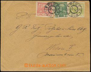 139687 - 1919 dopis vyfr. smíšenou frankaturou již neplatné rakouské