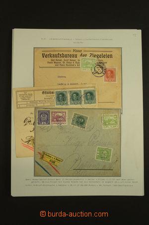 139733 - 1918-20 [SBÍRKY]  sestava 18ks celistvostí s předběžnými a s
