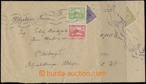 160251 - 1919 sestava 2ks dopisů vyfr. půlenými rakouskými zn., 1