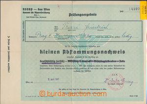 166974 - 1941 NĚMECKO  Prüfungsergebnis - Doklad o nežidovském původu