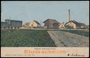 187634 - 1901 BUKOVSKO - DINÍN - nádraží, barevná jednozáběrová pohle