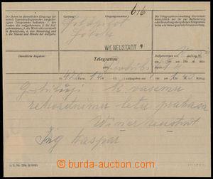 190205 - 1913 RU LETECKÉ VOJENSKÉ ÚTVARY - HOLEKA  telegram s gratula