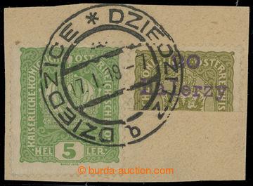 207821 - 1919 DZIEDZICE / Mi.1, fialový přetisk 20 HALERZY na půlené