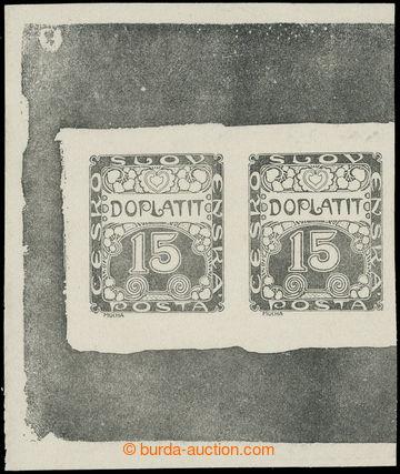 217587 - 1919 ZT  Ornament 15h, zkusmý tisk v černé barvě na bíl
