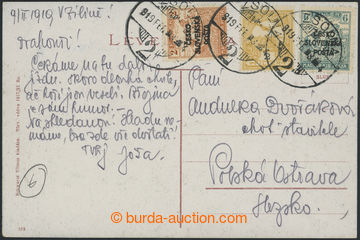 228380 - 1919 Žilinské vydání (Šrobárův přetisk), pohlednice