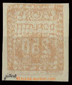 24418 - 1919 250h s úplným archovým obtiskem, Pof.DL10, zk. Gilbe