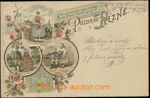 26566 - 1894 Plzeň costume, collage, color lithography, Us, good co