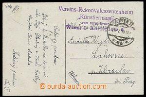 27398 - 1915 4-řádkové fialové razítko Vereins - Rekonvaleszent