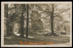 27634 - 1929 HAMR NA JEZEŘE - Děvín, zřícenina hradu, čb fotopohledn