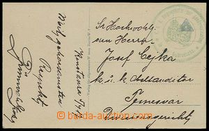 29458 - 1917 green round  coat of arms' postmark Country přidělenc