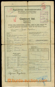 29578 - 1919 Czechoslovakia  Travel sheet issued Generálním konzulát
