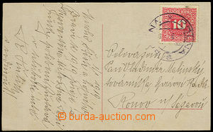 32376 - 1918 picture post card franked by Austrian parallel postage