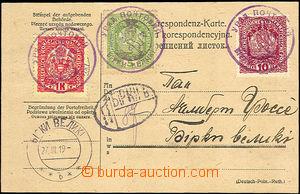 37562 - 1919 WEST UKRAINE  Austrian service receipt in/at German - P