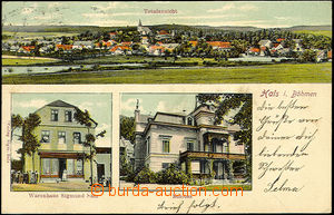 44503 - 1905 HALŽE (Hals in Bohemia) - color 3-views, long address,