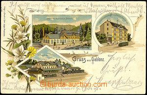 44827 - 1900 Jablonec nad Nisou - Gruss aus Gablonz, litografie, ele