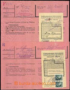 46056 - 1943-44 TEREZÍN  2 pcs of blank form/-s for sending admissi