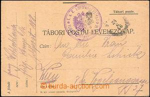 46516 - 1916 K.u.K.. LUFTFAHRTRUPPEN* AIRCRAFT COMPANY No.14, superb
