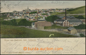 48888 - 1904 HORNÍ BENEŠOV (Bennisch) - general view, in foreground