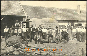 49690 - 1925 pěstitelé zeleniny dodávající na trh do Vídně; n