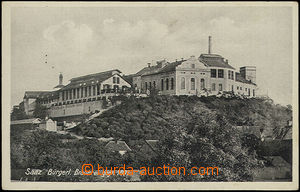 50979 - 1915? Žatec,  B/W view of civil brewery, Un, good condition