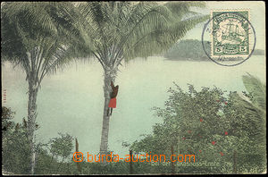 51902 - 1910 DEUTSCH NEUGUINEA view card sent to Bohemia, franking o
