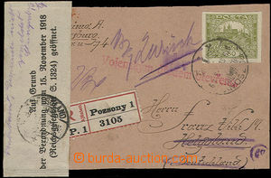 52232 - 1919 přebal z balíku zaslaného jako R do Německa, prošl