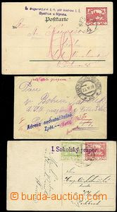 55423 - 1919 sestava 3ks celistvostí:  pohlednice s útvarovým raz