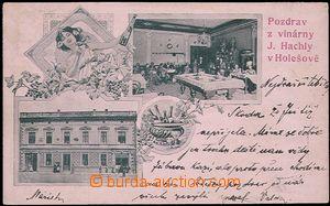 55688 - 1901 Holešov - pozdrav z vinárny J. Hachly, exteriér, ine