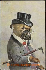 56250 - 1910 dogs, humorný picture dog in/at opera-hat smoking ciga