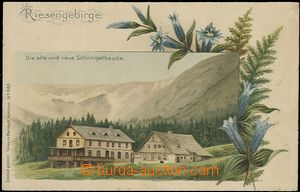 58288 - 1910 Schlingova old and new hut, color drawn lithography, si