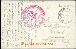 58878 - 1919 23. Czechoslovak Rifle Rgt./ Commander regiment  big re