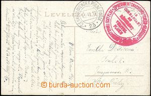 58879 - 1919 23. Czechoslovak Rifle Rgt./ Commander regiment  big re