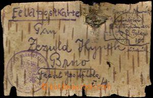 61702 - 1915 LÍSTEK Z BŘEZOVÉ KŮRY  přepravený polní poštou,