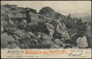 61925 - 1905 Šumava - muž na vrcholu Javora; DA, prošlá, lehce o