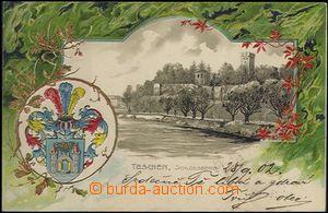 62479 - 1902 ČESKÝ TĚŠÍN / CIESZYN (Teschen) - litografická ko