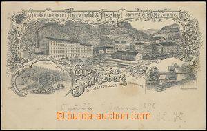 62517 - 1898 Jablonec nad Jizerou - tkalcovna hedvábí Herzfeld-Fisch