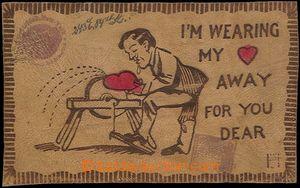62760 - 1905 pohlednice na buvolí kůži; prošlá z USA do Německ