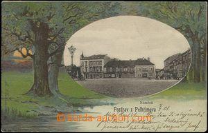 65197 - 1901 Pelhřimov - koláž se stromy, náměstí v oválu; DA, prošl