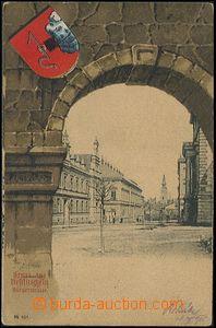 65198 - 1905 Nový Jičín - koláž pohled přes kamenný oblouk, erb; DA,