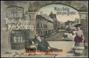 73044 - 1905 ŠUMPERK - color collage, Us, view of street, beer drin