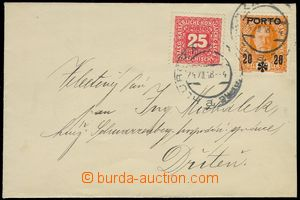 75532 - 1918 letter provisional franked with. postage-due Austrian s
