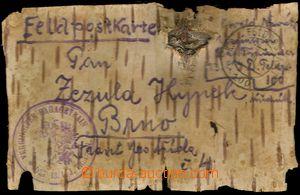 77397 - 1915 LÍSTEK Z BŘEZOVÉ KŮRY, DR FP č.100/ 30.III.15, kru