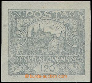 81075 -  Pof.21b, 120h stříbřitě šedá, zk. Mr., Kapras, Kar. +